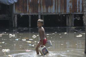 bambino-cambogia