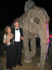chitwan, nepal, elefanti