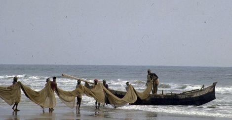 pescatori, kerala, india